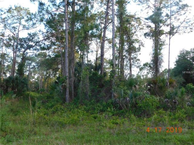 Salazar Avenue, North Port, FL 34291 (MLS #C7414525) :: Burwell Real Estate