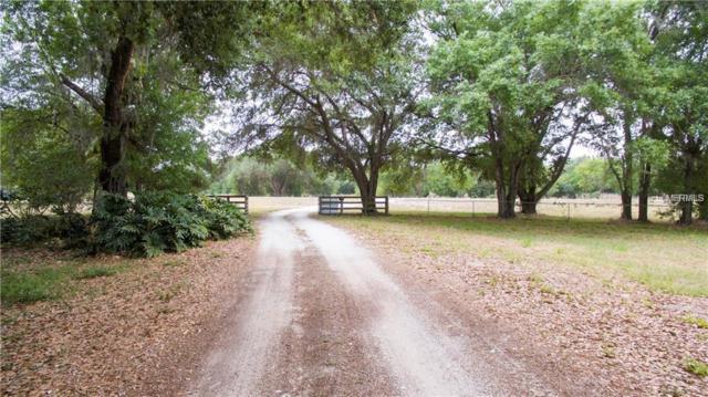4326 NE Highway 70, Arcadia, FL 34266 (MLS #C7414621) :: Team Bohannon Keller Williams, Tampa Properties