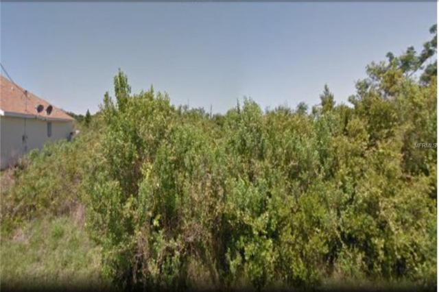 343 Spaulding Street, Port Charlotte, FL 33953 (MLS #C7414830) :: Medway Realty