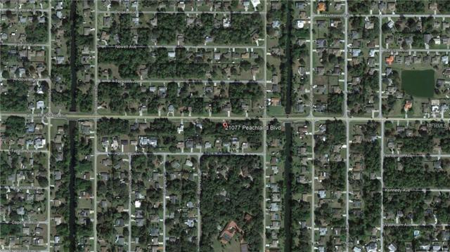 21077 Peachland Boulevard, Port Charlotte, FL 33954 (MLS #C7414856) :: The Duncan Duo Team