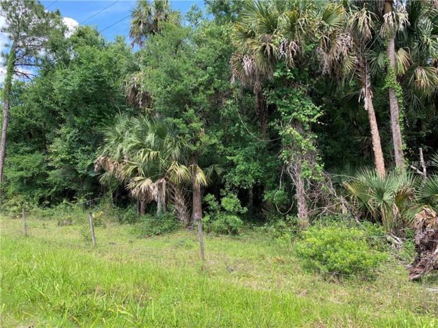 SW Hidden Oak Street, Arcadia, FL 34266 (MLS #C7414867) :: The Duncan Duo Team