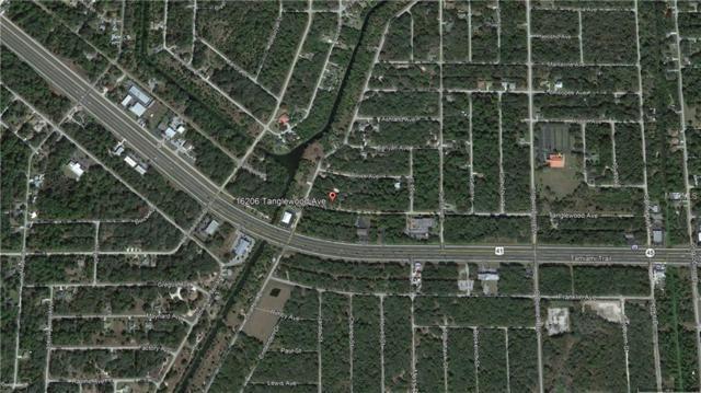 16206 Tanglewood Avenue, Port Charlotte, FL 33954 (MLS #C7414896) :: Medway Realty