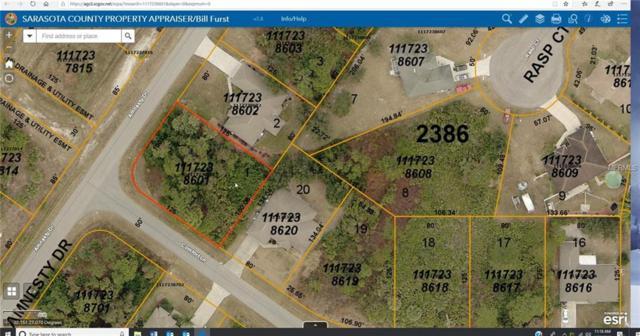 Amnesty Drive, North Port, FL 34288 (MLS #C7414977) :: Team Bohannon Keller Williams, Tampa Properties