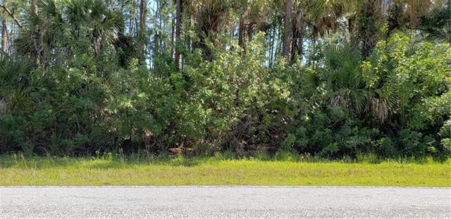 12542 Chamberlain Boulevard, Port Charlotte, FL 33953 (MLS #C7415110) :: The Duncan Duo Team