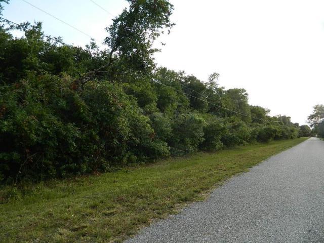 NW Lyons Street, Arcadia, FL 34266 (MLS #C7415475) :: Zarghami Group