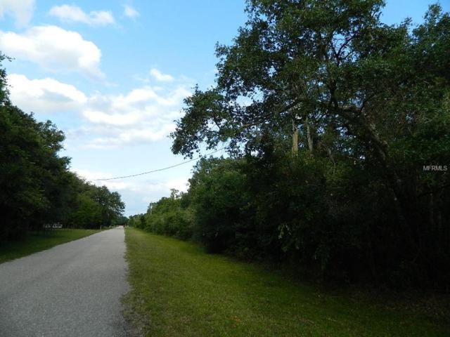 NW Lyons Street, Arcadia, FL 34266 (MLS #C7415478) :: Team Bohannon Keller Williams, Tampa Properties