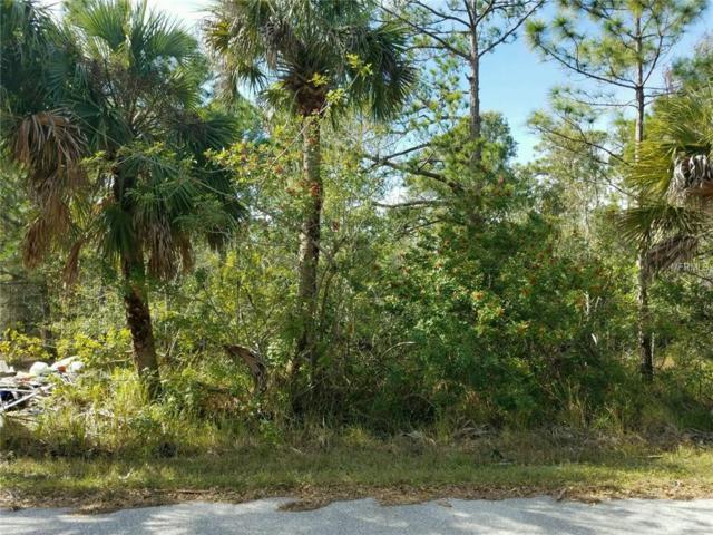 Killdeer Terrace, North Port, FL 34288 (MLS #C7415575) :: The Duncan Duo Team