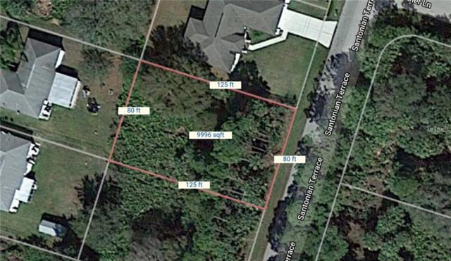 Santonian Terrace, North Port, FL 34286 (MLS #C7415661) :: Team Pepka