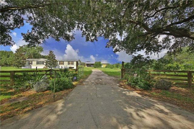 4951 NW Mizell Avenue, Arcadia, FL 34266 (MLS #C7415762) :: Team Bohannon Keller Williams, Tampa Properties