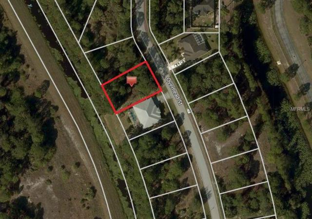 Overhead Street, North Port, FL 34288 (MLS #C7415887) :: Medway Realty
