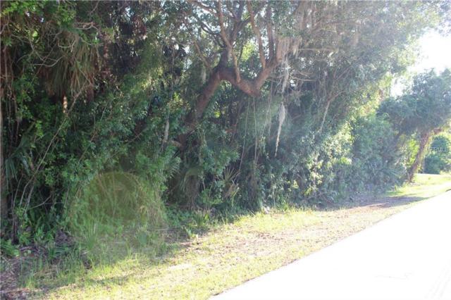21455 Bryn Mawr Avenue, Port Charlotte, FL 33952 (MLS #C7415897) :: Medway Realty