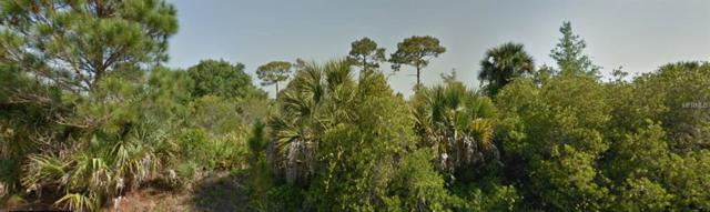 14236 Carney Avenue, Port Charlotte, FL 33953 (MLS #C7416024) :: The Duncan Duo Team