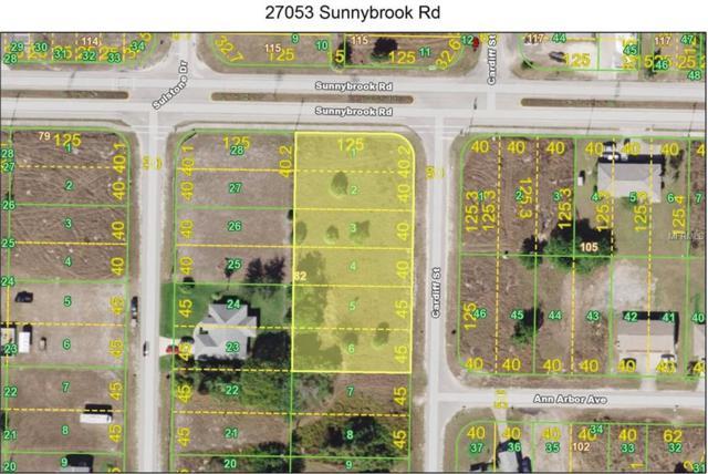27053 Sunnybrook Road, Punta Gorda, FL 33983 (MLS #C7416056) :: Medway Realty