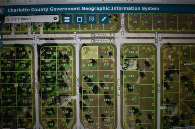 17 Beacon Drive, Placida, FL 33946 (MLS #C7416061) :: The BRC Group, LLC