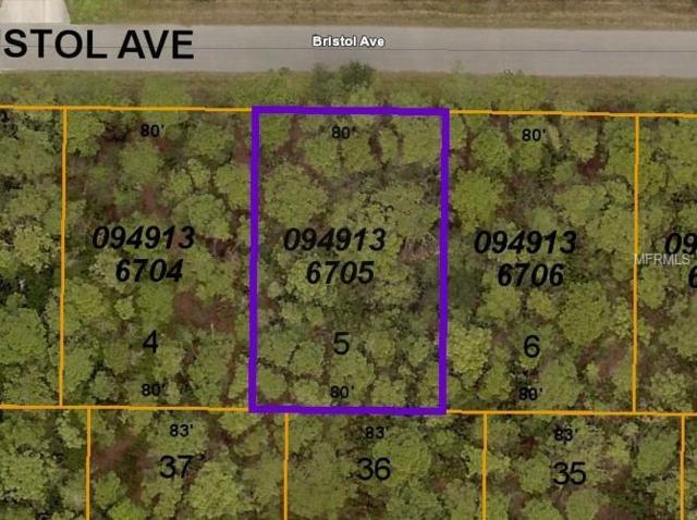 8517 Bristol (Lot 5) Avenue, North Port, FL 34291 (MLS #C7416105) :: The Duncan Duo Team