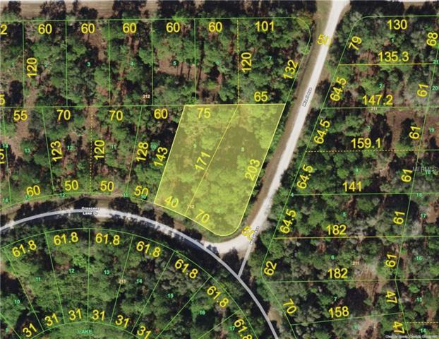 13159 Mizell Avenue, Punta Gorda, FL 33955 (MLS #C7416175) :: White Sands Realty Group