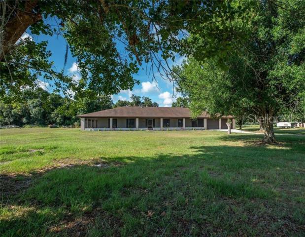 1419 NE Shiblon Drive, Arcadia, FL 34266 (MLS #C7416603) :: Cartwright Realty