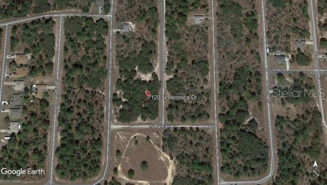 7120 N Veronica Drive, Citrus Springs, FL 34433 (MLS #C7416723) :: The Duncan Duo Team
