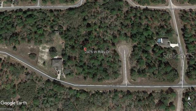 2475 W Riley Drive, Citrus Springs, FL 34434 (MLS #C7416725) :: The Duncan Duo Team