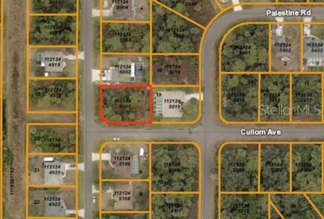 Fitzgerald Road, North Port, FL 34288 (MLS #C7416748) :: The Duncan Duo Team