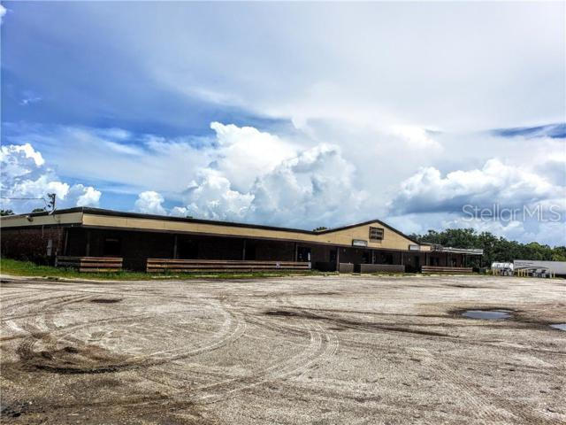 4135 SW Highway 17 Highway, Arcadia, FL 34266 (MLS #C7416836) :: Premium Properties Real Estate Services