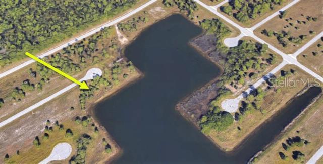 12403 & 12411 Lionfish Court, Placida, FL 33946 (MLS #C7417297) :: The BRC Group, LLC