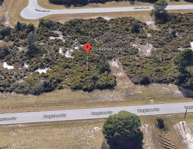 203 Baytree Drive, Rotonda West, FL 33947 (MLS #C7417316) :: Cartwright Realty