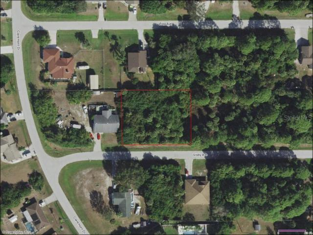 11342 Visby Avenue, Port Charlotte, FL 33981 (MLS #C7417376) :: Cartwright Realty