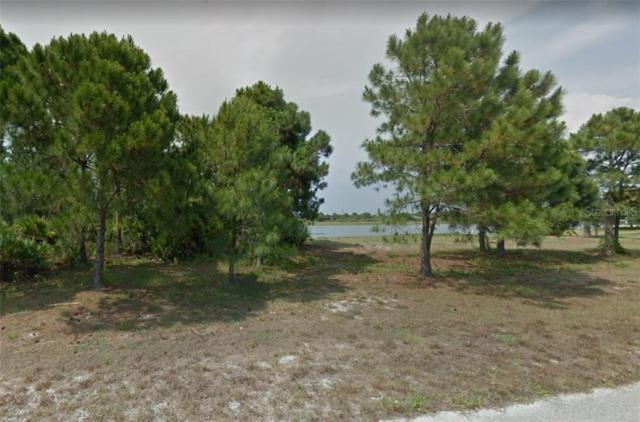 14 Carline Lane, Placida, FL 33946 (MLS #C7417387) :: Rabell Realty Group