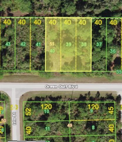 27366 Green Gulf Boulevard, Punta Gorda, FL 33955 (MLS #C7417421) :: The Edge Group at Keller Williams