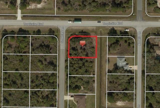 Gottfried Lane, North Port, FL 34291 (MLS #C7417443) :: Team 54
