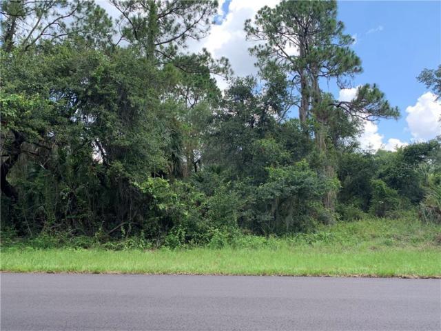 17372 Cox Avenue, Port Charlotte, FL 33948 (MLS #C7417528) :: The Duncan Duo Team