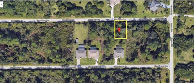 13219 Donaldson Avenue, Port Charlotte, FL 33953 (MLS #C7417683) :: Homepride Realty Services