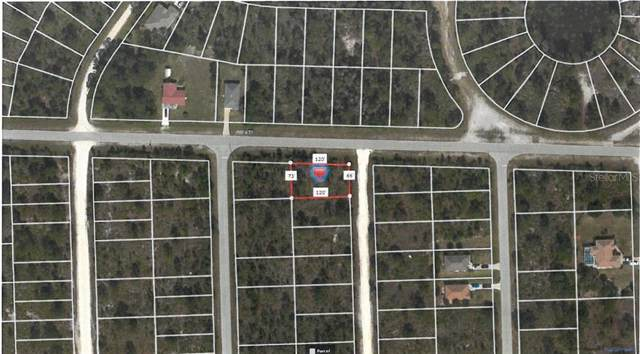 12275 Barcelona Drive, Punta Gorda, FL 33955 (MLS #C7418014) :: Premium Properties Real Estate Services