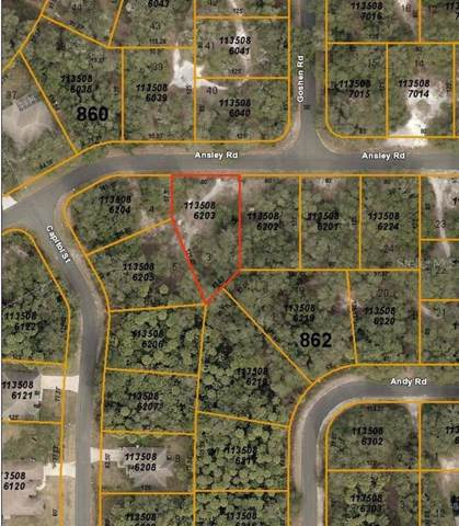 Ansley Road, North Port, FL 34288 (MLS #C7418246) :: Team Pepka