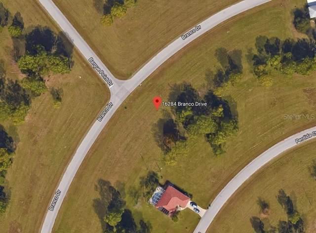 16284 Branco Drive, Punta Gorda, FL 33955 (MLS #C7418608) :: 54 Realty