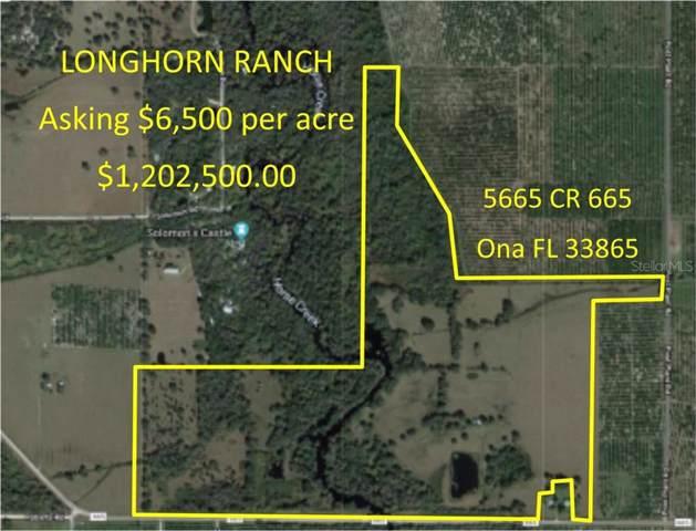 5665 County Road 665, Ona, FL 33865 (MLS #C7418668) :: Team Bohannon Keller Williams, Tampa Properties