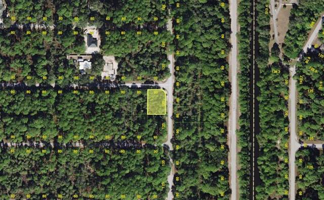 105 Statler Street, Port Charlotte, FL 33954 (MLS #C7418791) :: The Duncan Duo Team