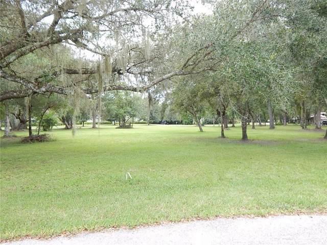 4067 NE Diane Terrace, Arcadia, FL 34266 (MLS #C7419220) :: Cartwright Realty
