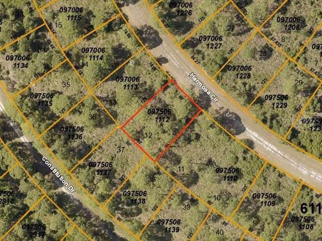 Hermosa Circle, North Port, FL 34291 (MLS #C7419489) :: 54 Realty
