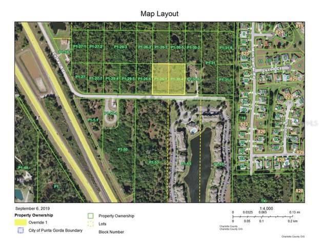 2500 Luther Road, Punta Gorda, FL 33983 (MLS #C7419758) :: Team 54