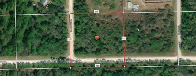 127 Appaloosa Avenue, Clewiston, FL 33440 (MLS #C7419936) :: 54 Realty