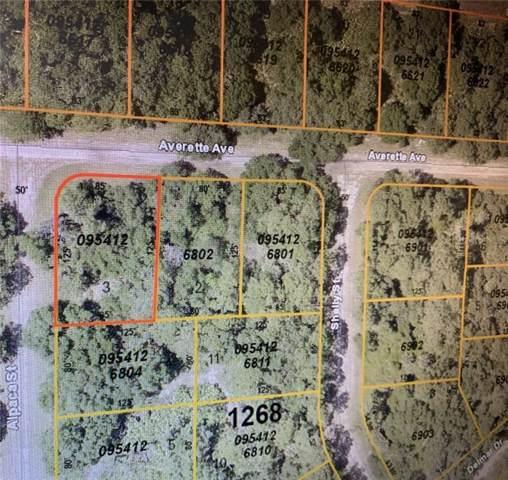 Averette Avenue, North Port, FL 34291 (MLS #C7420070) :: Homepride Realty Services