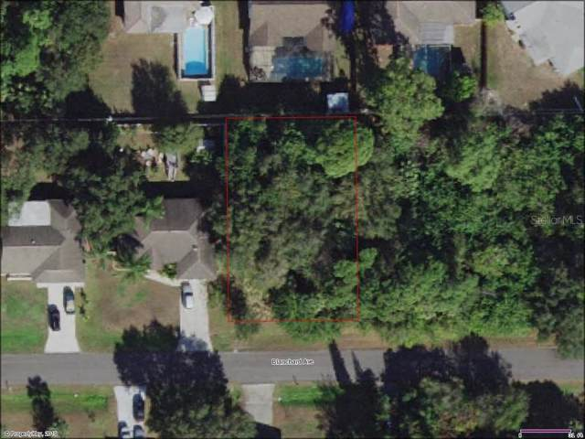 22360 Blanchard Avenue, Port Charlotte, FL 33952 (MLS #C7420153) :: Ideal Florida Real Estate