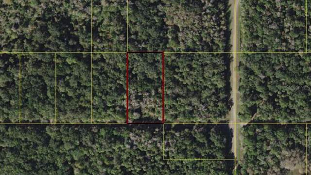 SW Adventure Way, Arcadia, FL 34266 (MLS #C7420361) :: The Light Team
