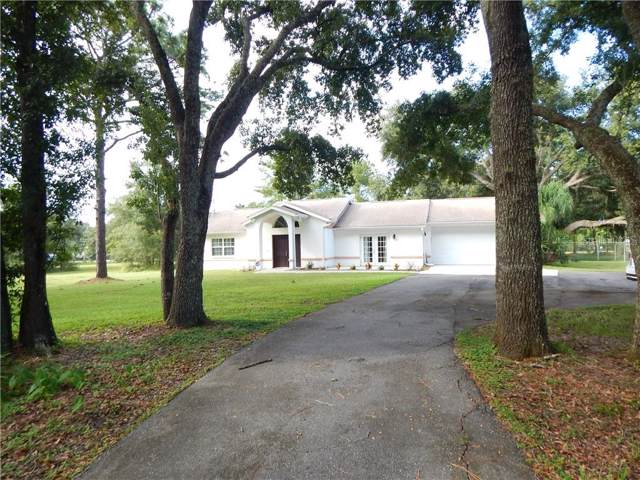 27437 Golden Meadow Drive, Wesley Chapel, FL 33544 (MLS #C7420374) :: Griffin Group