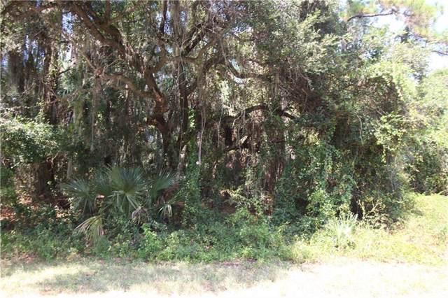Rada Lane, North Port, FL 34288 (MLS #C7420621) :: Premier Home Experts