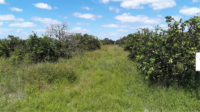 2031 Graham Road, Punta Gorda, FL 33982 (MLS #C7420623) :: Premium Properties Real Estate Services