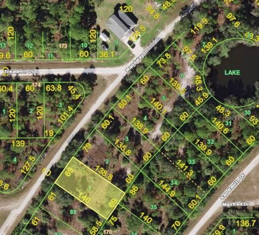 13182 Mandalay Drive, Punta Gorda, FL 33955 (MLS #C7420643) :: Florida Real Estate Sellers at Keller Williams Realty