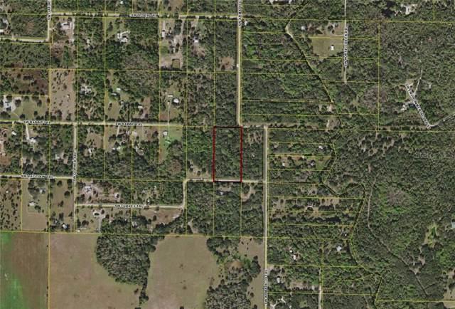 8596 SW Turkey Trail, Arcadia, FL 34266 (MLS #C7420781) :: Rabell Realty Group